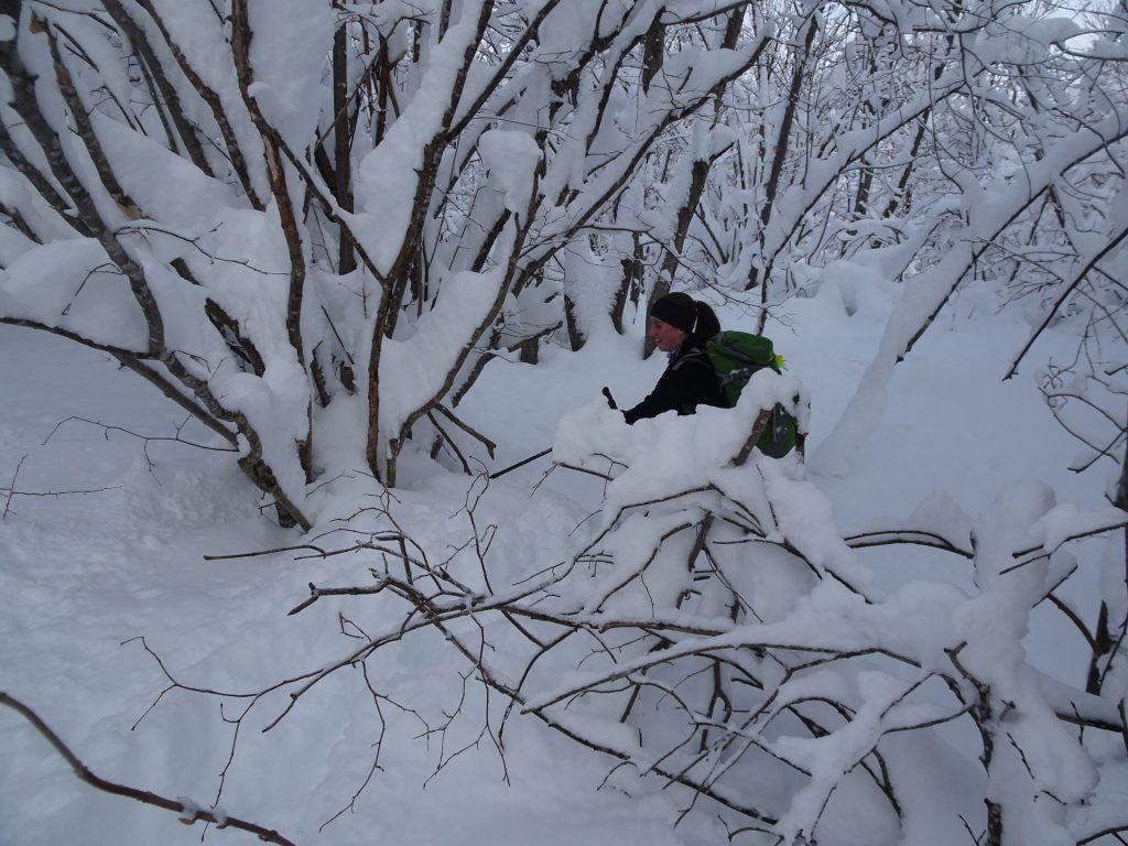 Sem pridi, tukaj je več snega za kopat...